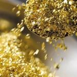 700 тонн золота пропало в Хабаровском крае