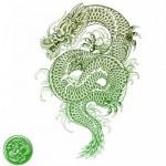 Что подарит год водяной змеи?