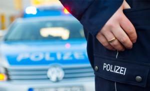 Какие мотивы у германских террористов из «Вервольф»?