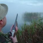 Члены «Справедливой России» предложили полностью запретить охоту на территории России