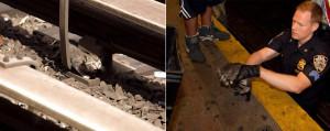 Нью-Йоркское метро остановилось ради спасения котят