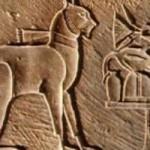 В Китае найдены свидетельства дружбы древних фермеров с котами