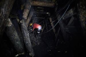 Ученые определили, что под землей живут и глобальные космополиты