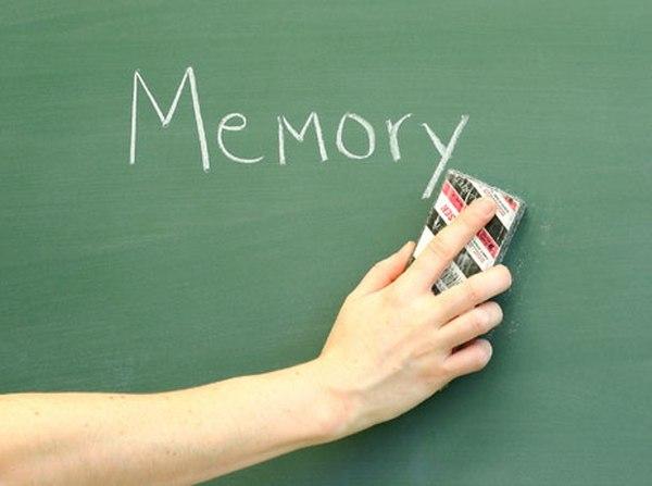 Нейробиологи установили, что именно влияет на формирование социальной памяти