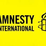 Организация Amnesty International недовольна, что украинские власти не способны защитить людей от пы...